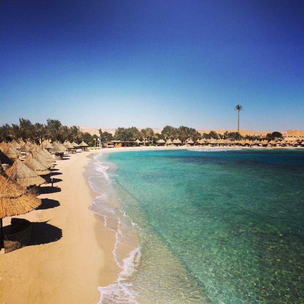 Traumhaft relaxen: Nach dem Tauchen geht's noch an den Strand – oder direkt noch eine Runde Schwimmen im türkisen Wasser.