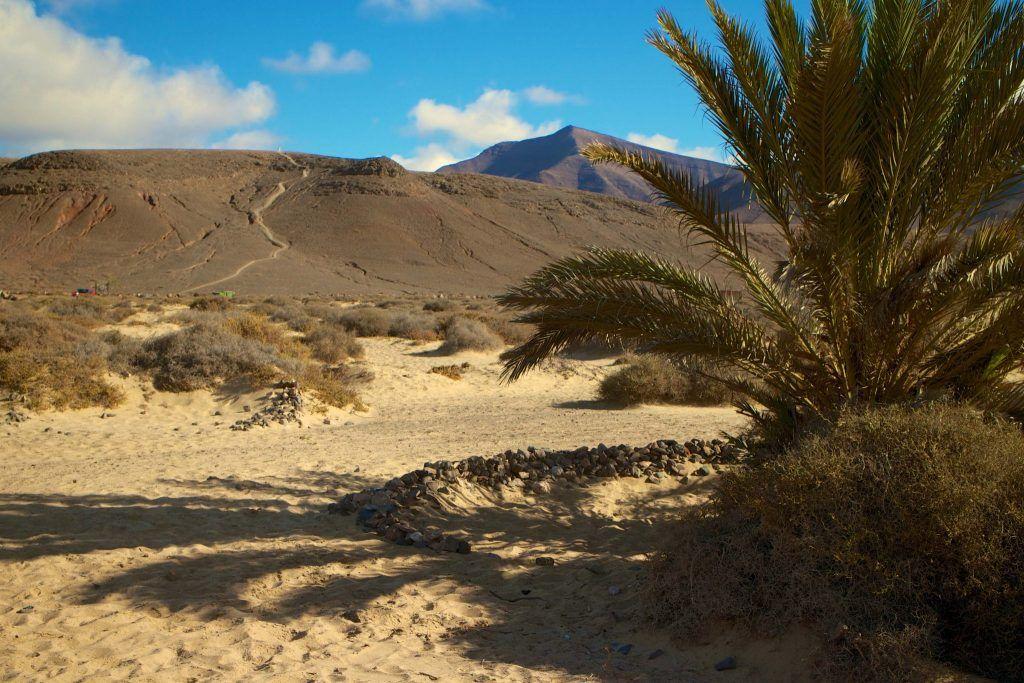 lanzarote papagayo strände urlaub reise Lanzarote ist eine tolle, abwechslungsreiche Insel sowohl für Tauchurlauber und alle, die gerne ihre Zeit auf dem Trockenen verbringen. Foto: Luisa Praetorius