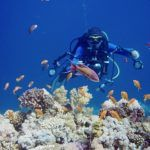 sharm el sheik reise urlaub tipps cleopatra luxury resort vip diving college tauchen ORG DSC01341