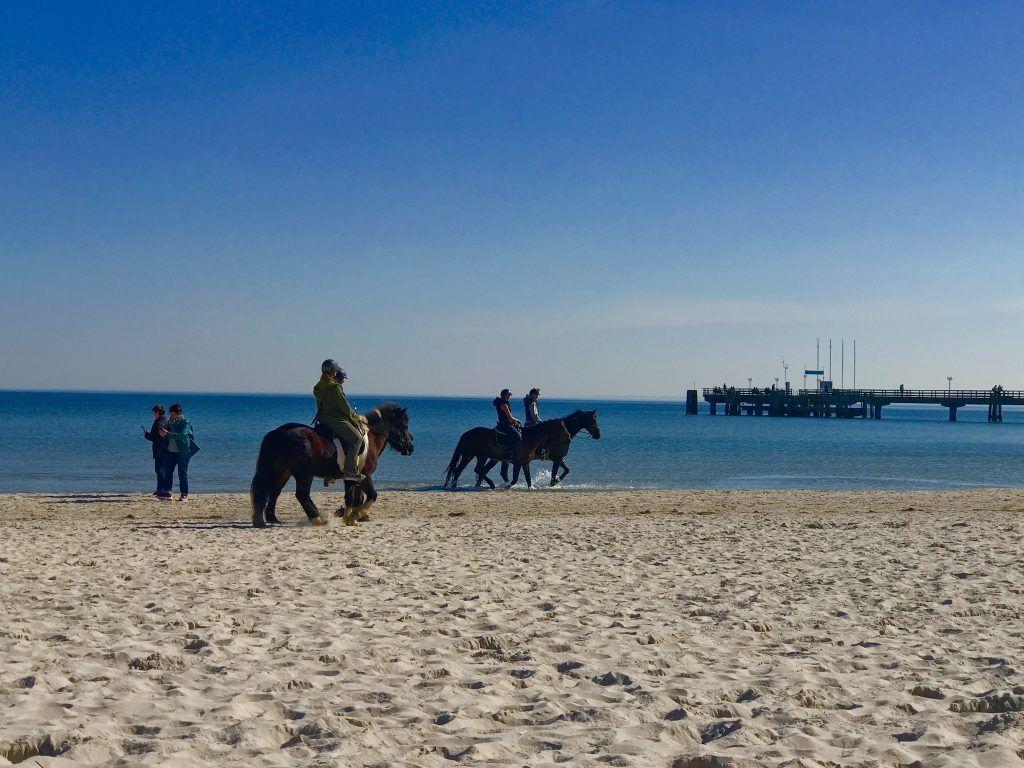 Bis zum letzten Tag nutzen Reiter die Möglichkeit, am Ostseestrand reiten zu gehen. Foto: Sascha Tegtmeyer