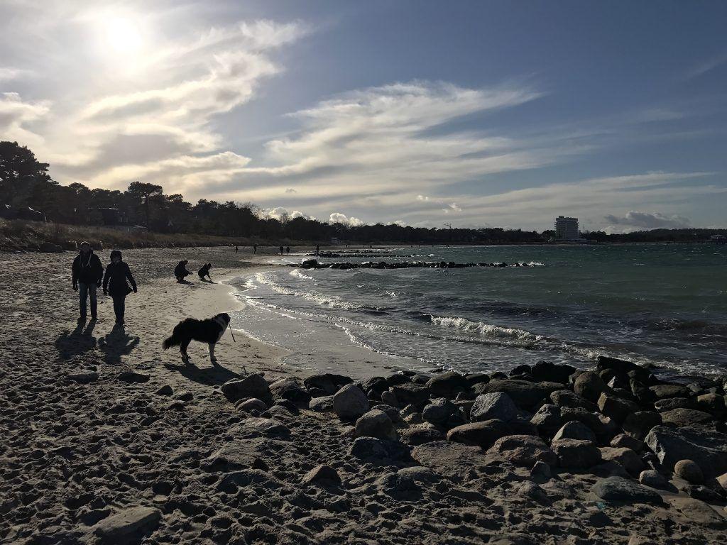 Bis zum 31. März könnt Ihr in der Lübecker Bucht noch mit eurem Hund an den Strand. Foto: Sascha Tegtmeyer
