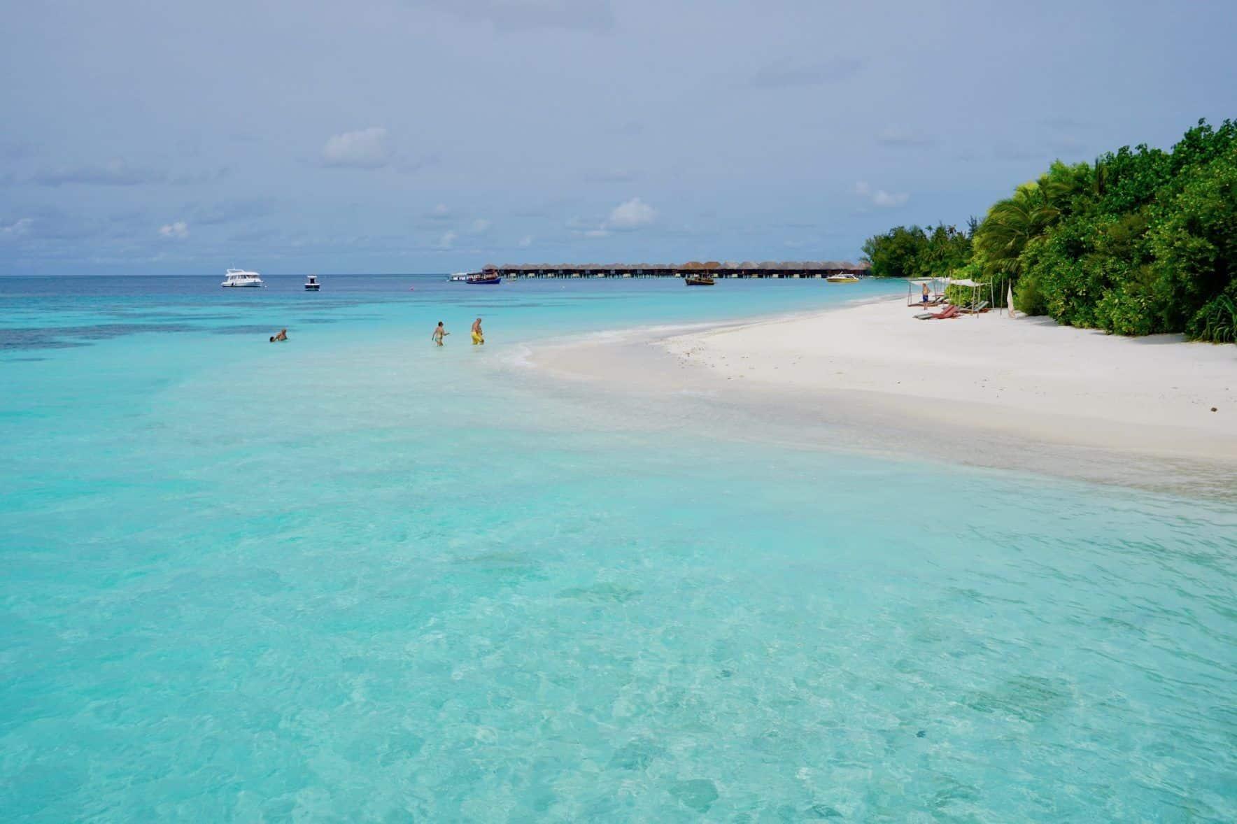 Die Lagune von Coco Bodu Hithi: Bei diesem Anblick kann man die Zeit einfach nur im Wasser verbringen. Foto: Sascha Tegtmeyer Reisebericht Coco Bodu Hithi Tipps Malediven Erfahrungen