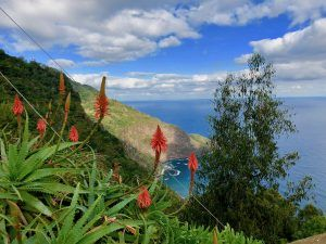 Besonders die Panorama-Blicke haben es uns angetan: Unsere Madeira-Erfahrungen sind durchweg positiv! Foto: Sascha Tegtmeyer