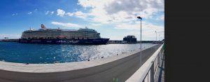 Im Hafen von Funchal geben sich die Kreuzfahrtschiffe die Klinke in die Hand! Foto: Sascha Tegtmeyer