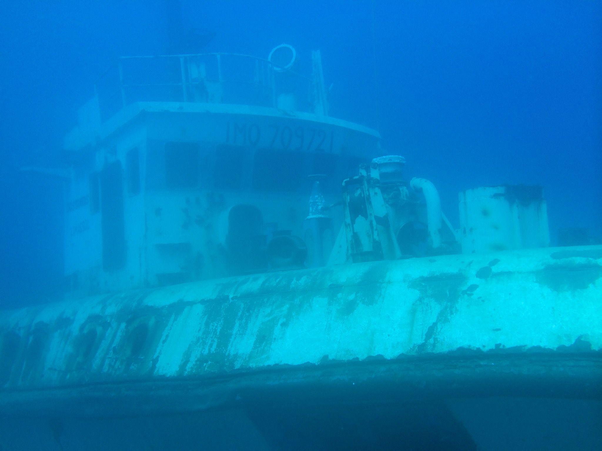 Mit einem Unterwassergehäuse für iPhone oder andere Smartphones lassen sich beim Tauchen spannende Aufnahmen machen! (Die Aufnahme wurde mit einem iPhone gemacht) Foto: Sascha Tegtmeyer
