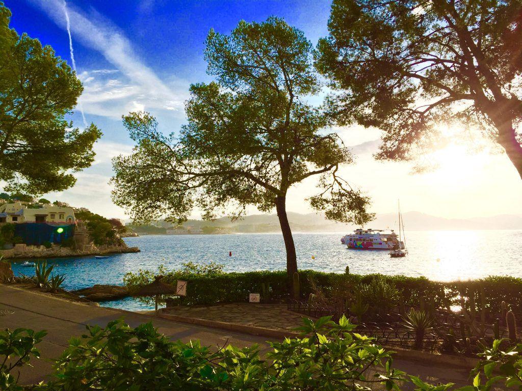 Günstiger Urlaub: Mallorca ist ein perfektes Reiseziel, um im Herbst, Winter und Frühling günstig Urlaub zu machen! Foto: Sascha Tegtmeyer