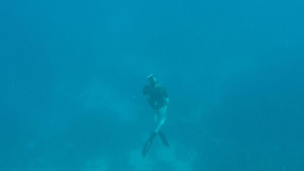 Beim Freediving taucht man ohne Tauchgerät mit nur einem Atemzug ab und bleibt mehrere Minuten unter Wasser. Foto: Sascha Tegtmeyer