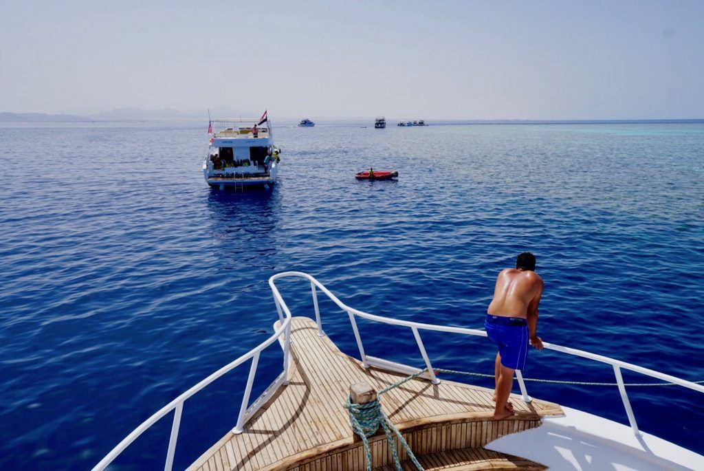 Reisebericht Safaga Tipps Auf den Schnorchel-Touren und Tauchausflügen werden die schönsten Riffe vor Safaga angesteuert. Foto: Sascha Tegtmeyer