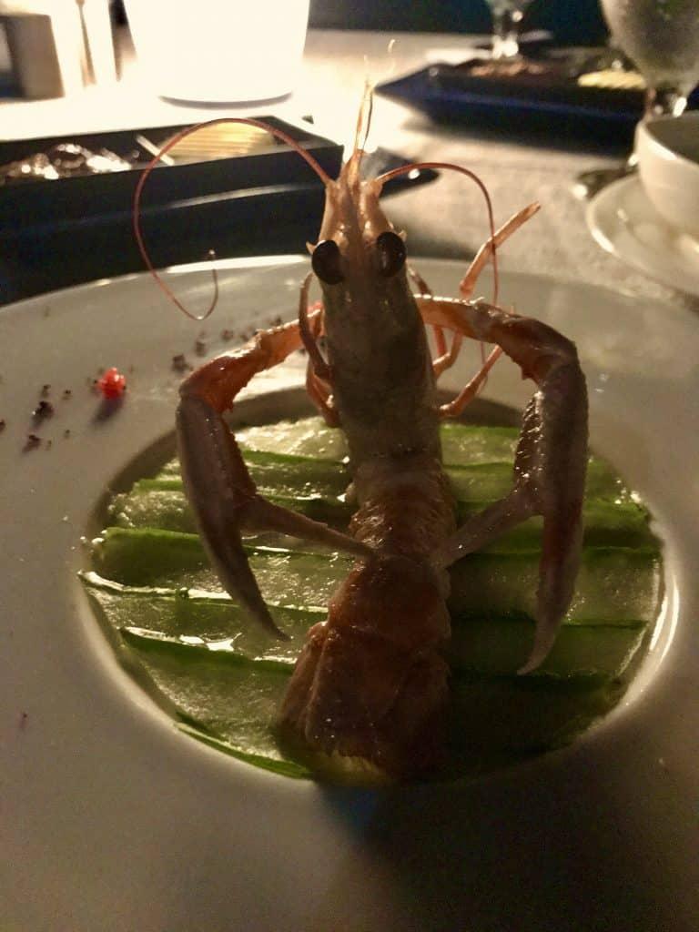 Kulinarische Köstlichkeiten: einige Restaurants auf Coco Bodu Hithi sind preisgekrönt. Foto: Sascha Tegtmeyer