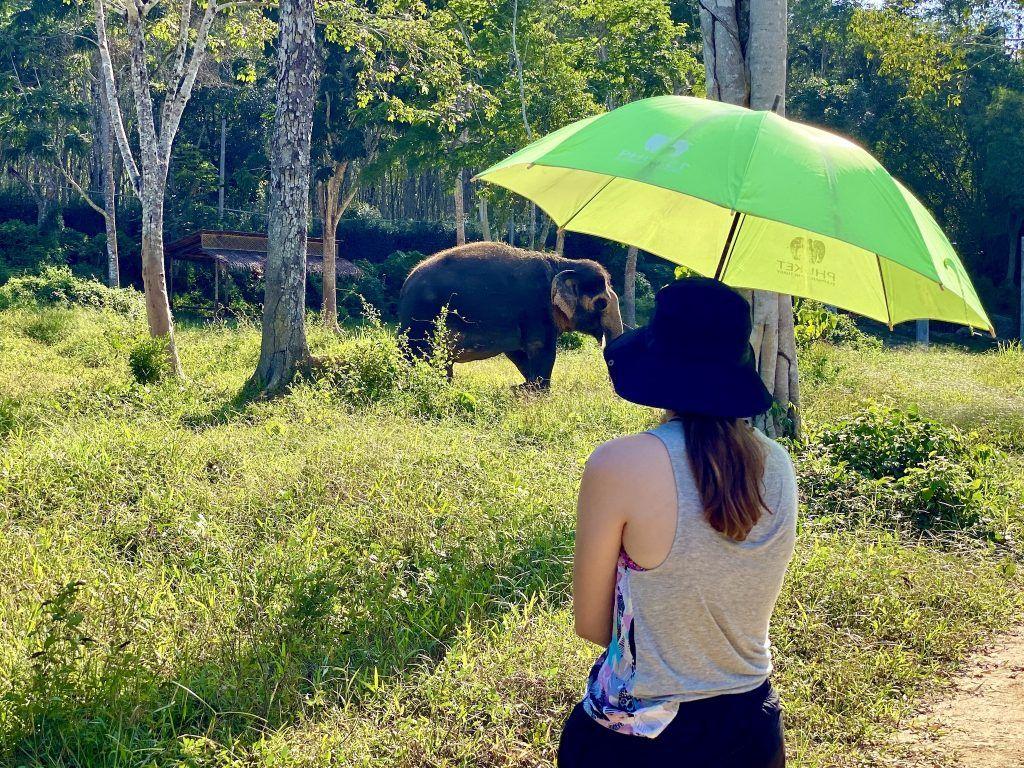 Das Phuket Elephant Sanctuary sensibilisiert die Besucher für die Belange der Elephanten. Foto: Sascha Tegtmeyer