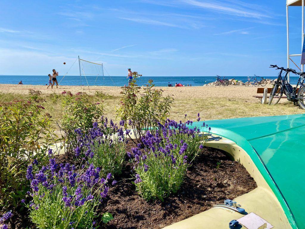 Entspanntes Strandleben: Im Vergleich zu den Hotspots an der Ostseeküste geht es auf der Insel ziemlich relaxt zu. Foto: Sascha Tegtmeyer