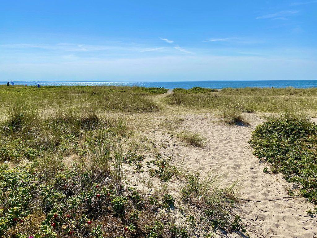 Reisebericht Fehmarn Tipps Urlaub Reise Kurzurlaub Strand badenIMG 9030