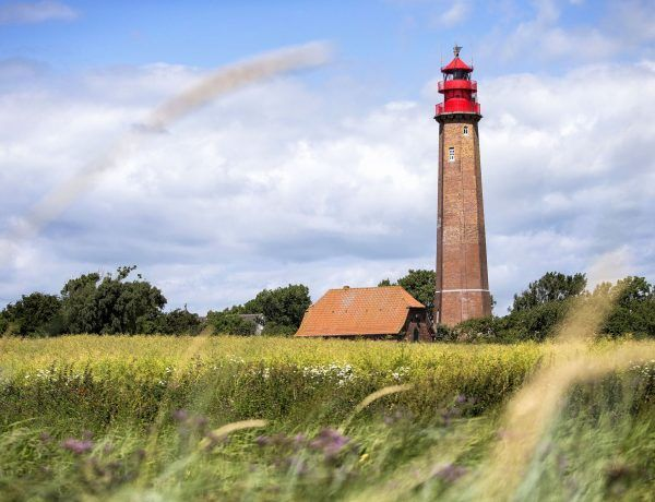 Mein Reisebericht aus Fehmarn mit vielen wertvollen Tipps und Inspirationen für einen herrlichen Urlaub auf der Ostseeinsel. Foto: Thies Rätzke / Tourismus-Service Fehmarn