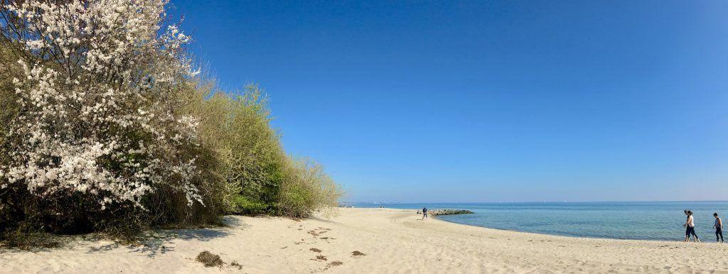 Idyllisch und ruhig: Der Strand von Sierksdorf ist herrlich zum Entspannen. Foto: Sascha Tegtmeyer