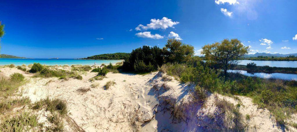 """""""Die Karibik Europas"""": Einige der schönsten Strände der Welt befinden sich auf Sardinien. Im Bild: Cala Brandinchi. Foto: Sascha Tegtmeyer"""