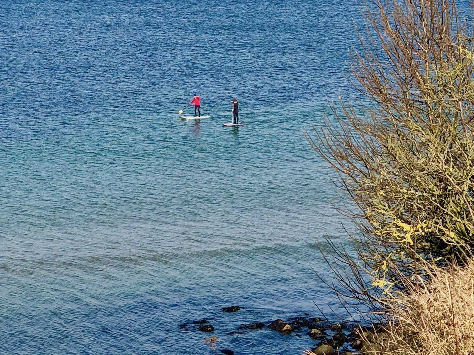 SUP im Winter: Zwei Stand Up Paddler sind im Februar auf der 4 Grad kalten Ostsee unterwegs. Foto: Sascha Tegtmeyer