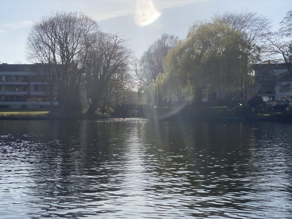 Der Feenteich in Hamburg ist im Frühjahr eines der schönsten SUP-Gewässer. Foto: Sascha Tegtmeyer