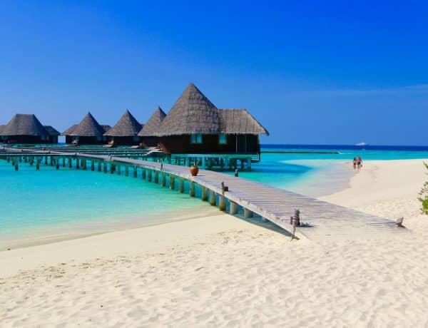 Reisebericht Malediven: Tipps – das Inselparadies sollte unbedingt auf deine Bucket Liste. Foto: Sascha Tegtmeyer Reisebericht Malediven Tipps