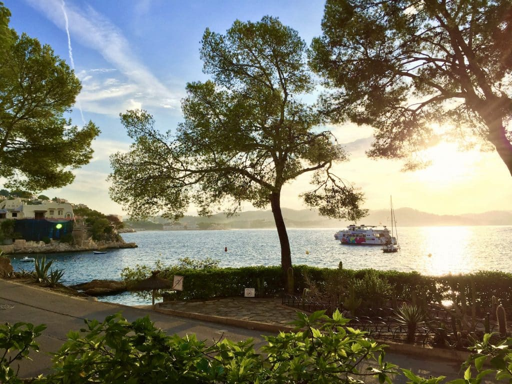 reisebericht mallorca tipps urlaub reise sehenswuerdigkeiten aktivitaeten3475FAA3 9B3A 4CEA 9333 BF70BDFE7511 Reisebericht Mallorca: Tipps für eine Insel voller Freude